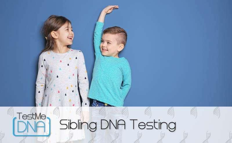 Sibling DNA Testing Teaser