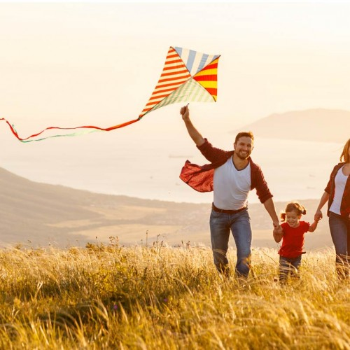 Family Flying Kite in Field
